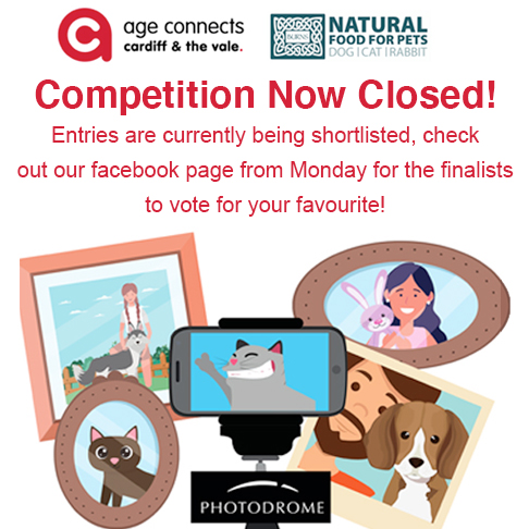 Age connect pet photography competition